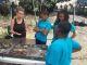 En Guadeloupe, dans le cadre d'un parcours Éducation artistique et culturelle, des élèves de CM2 et des collégiens de sixième apprennent à reconnaître et à classer des débris archéologiques. //©Nadège Mantion
