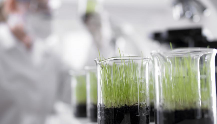 L'épreuve de sciences du brevet portera sur les SVT et la technologie. //©plainpicture/OJO/Adam Gault
