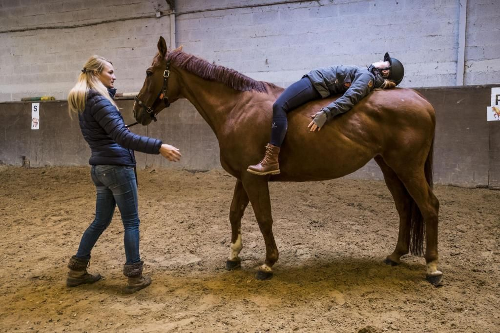 En équithérapie, le patient travaille tantôt sur le dos du cheval, tantôt au sol. Séance après séance, l'animal facilite le soin par sa sensibilité et son comportement. //©Simon Lambert/Haytham pictures pour l'Etudiant