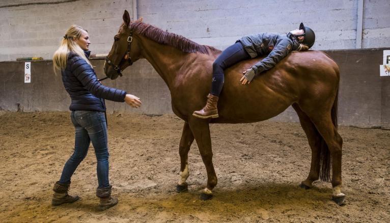 En équithérapie, le patient travaille tantôt sur le dos du cheval, tantôt au sol. Séance après séance, l'animal facilite le soin par sa sensibilité et son comportement.