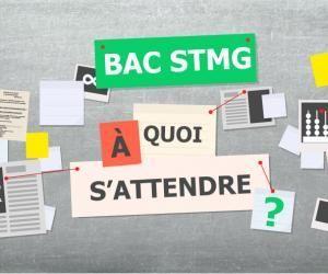 Bac STMG - À quoi s'attendre