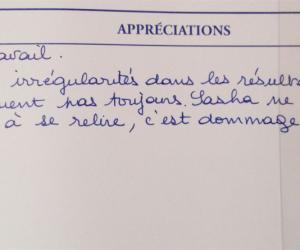 Chaque professeur a sa technique en matière d'appréciations.