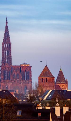 """Strasbourg, """"capitale"""" de la région Grand Est, attire 50.000 étudiants."""