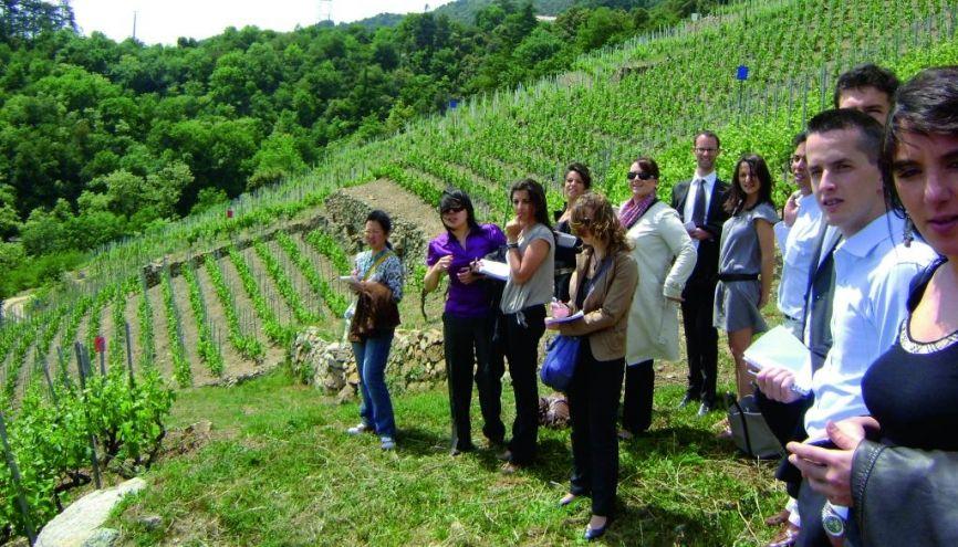 Promo du MS commerce international des vins et spiritueux de la School of Wine and Spirit Business de Dijon. //©ESC Dijon Bourgogne
