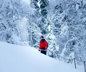 Grâce à son stage, Camille a six mois pour découvrir la Laponie.