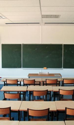 Lycée pro, technologique ou général, chacun propose un chemin et un avenir différents.