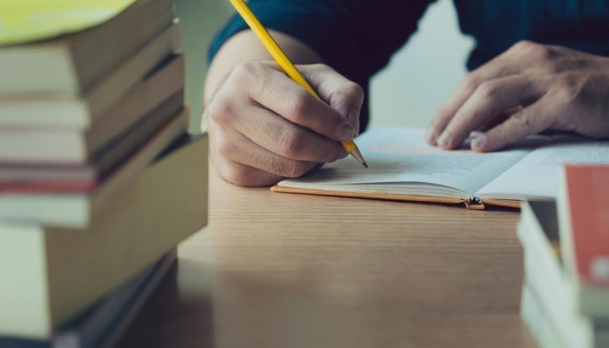 Les prépas D1 et D2 permettent de bénéficier de connaissances et de méthodes de travail complémentaires. //©Adobe Stock/panitan