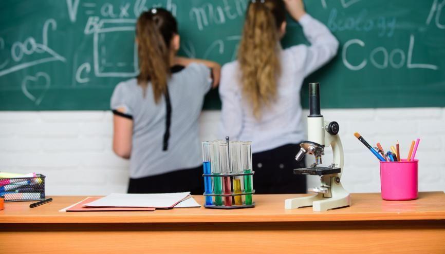 Parmi les élèves ayant participé à l'étude Cedre, 22% ont un mauvais, voire très mauvais niveau en sciences. //©Adobe Stock/Roman Stetsyk
