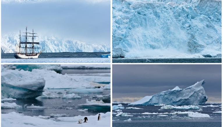Nacim est parti six semaines à bord de l'Arctic Sunrise.