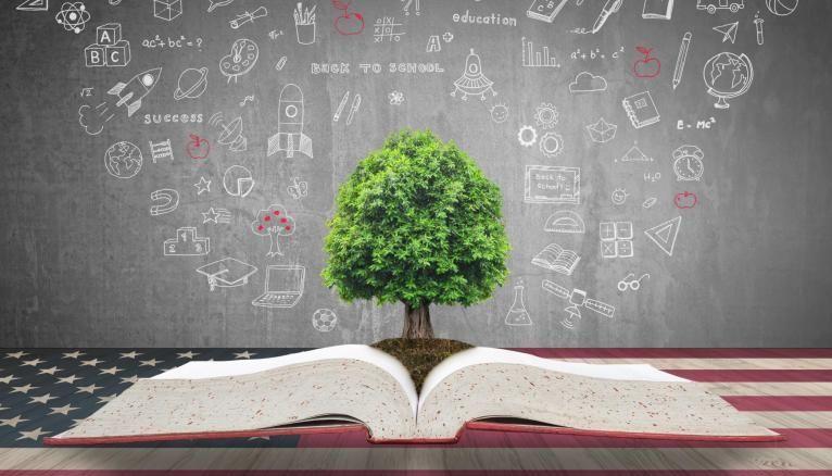 Le développement durable, un enjeu qui entre en compte aussi pour les classements des meilleurs établissements.