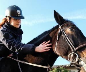 Alicia a intégré l'unité équestre de la police nationale des Yvelines.