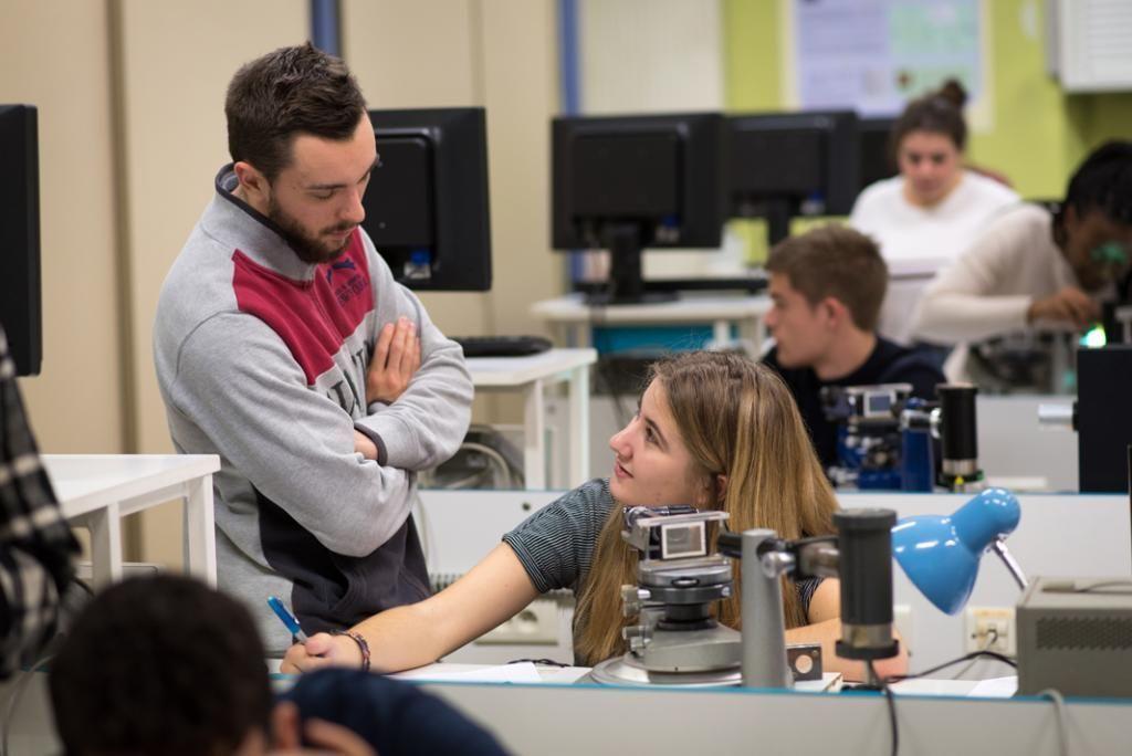Une partie des cours de sciences se déroule en travaux dirigés. //©Olivier GUERRIN pour L'Étudiant