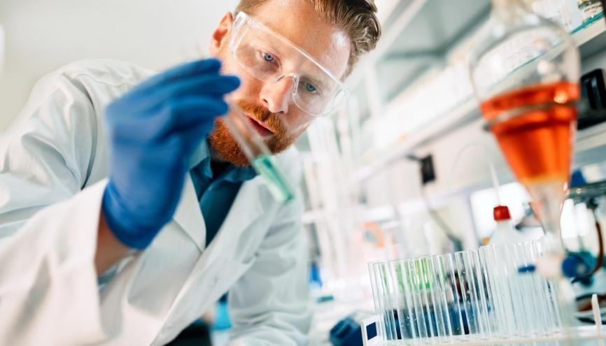 """Faire une école d'ingénieurs tout en se choisissant une """"majeure"""" en biologie ou en pharmacie, c'est possible ! //©Adobe Stock / nd3000"""
