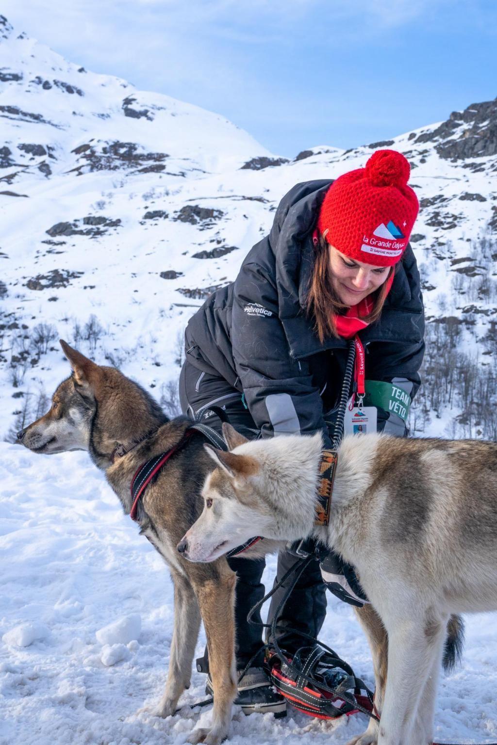 """Les étudiants de la """"Team Veto"""" sont aux petits soins des chiens qui doivent parcourir 400 km lors de la Grande Odyssée. //©Romain Tissot"""
