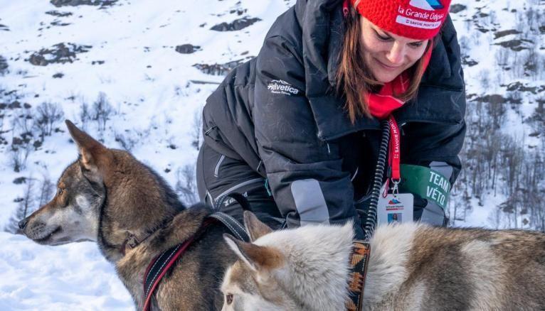 """Les étudiants de la """"Team Veto"""" sont aux petits soins des chiens qui doivent parcourir 400 km lors de la Grande Odyssée."""