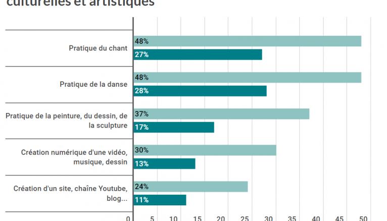 Les disparités de niveau de pratiques culturelles et artistiques.