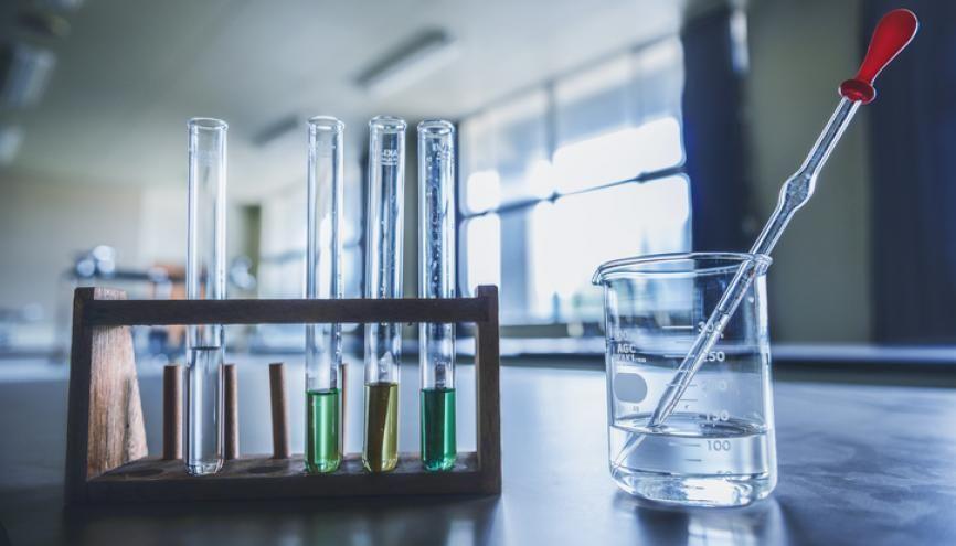 """Pour l'épreuve de sciences du brevet, les deux thématiques retenues pour la session de juin sont """"Physique-chimie et SVT"""". //©plainpicture/Score. by Aflo/AFLO"""