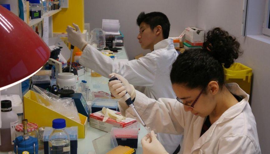 Michel et Kaouther (au premier plan) ont travaillé sur des séquences d'ADN. //©L'Arbre des connaissances