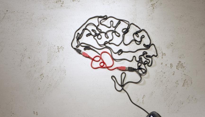 Maths, langues, français... il faut être polyvalent pour suivre en psychologie. //©plainpicture/Till Melchior