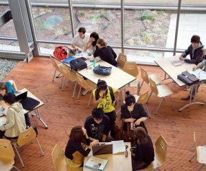 Pour intégrer une école de commerce post-bac, misez sur l'histoire-géographie, les sciences économiques et sociales, ainsi que les langues.