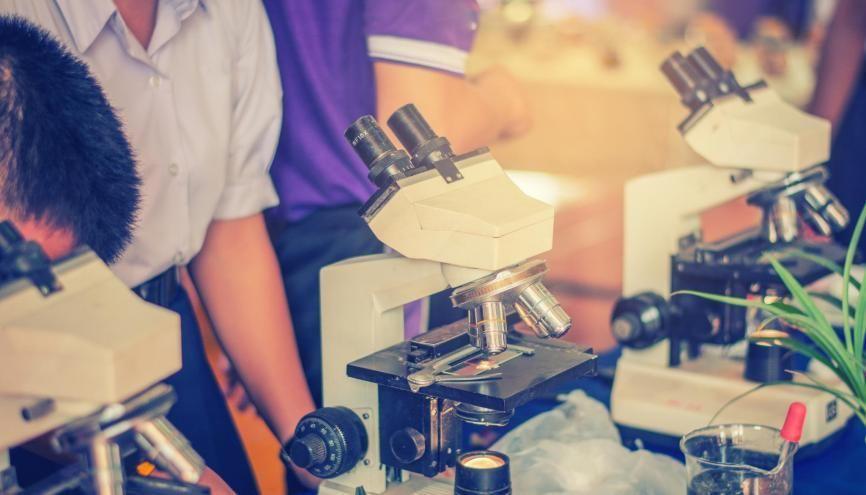 À la fin du lycée, vous devrez savoir notamment exploiter des données scientifiques. //©EsanIndyStudios / Adobe Stock