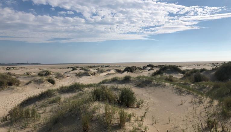 Juliette a visité l'île Texel, au nord des Pays-Bas.