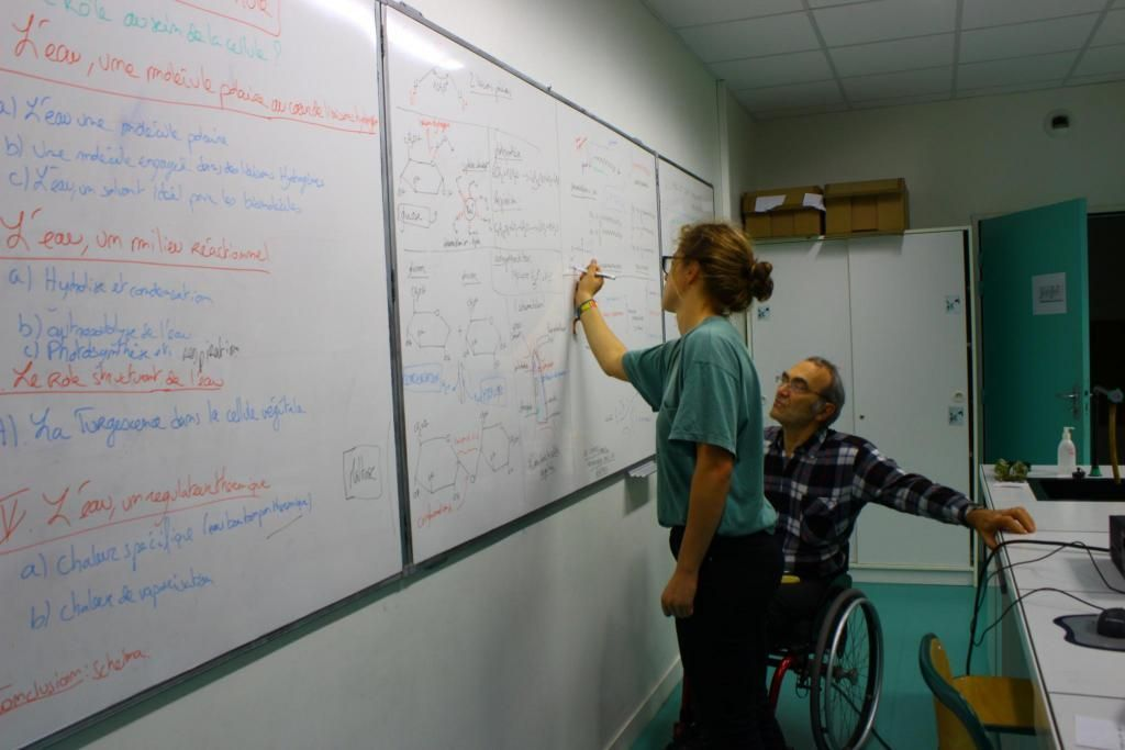 Juliette précise un schéma à la demande de l'enseignant. //©Delphine Dauvergne