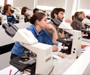 TP à la fac de médecine de Limoges. La sélection est rude en PACES, où l'on compte moins d'un étudiant sur quatre admis en 2e année.