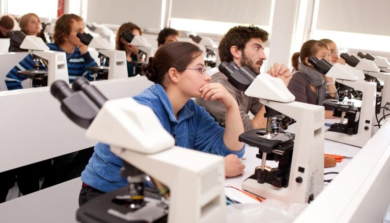 Le numerus clausus en médecine augmente de 499 places en 2017.