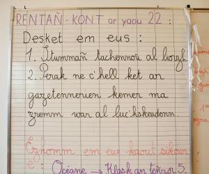 L'un des principaux débouchés des licences en langue régionale est l'enseignement, comme dans cette école primaire Diwan, où le breton est enseigné.