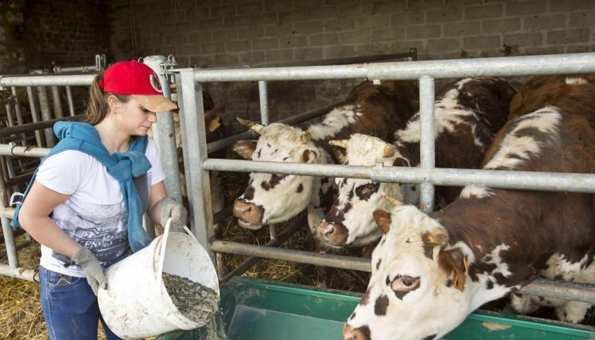 40% des salariés des exploitations agricoles sont des salariées. //©©Robert KLUBA/REA