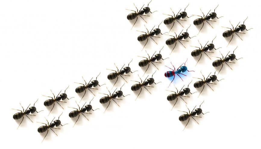 La discrimination à l'embauche constitue un délit pénal. //©plainpicture/Design Pics