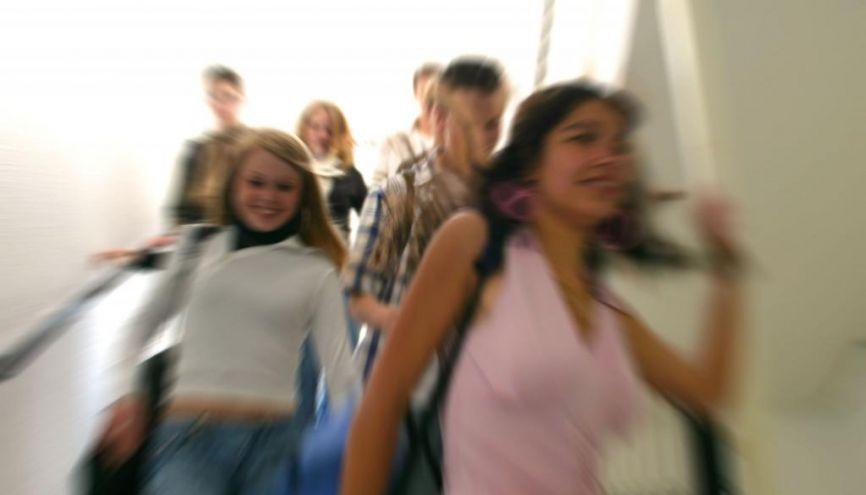 La 3e prépa pro est une bonne option pour les élèves qui ont besoin d'un système différent. //©Phovoir