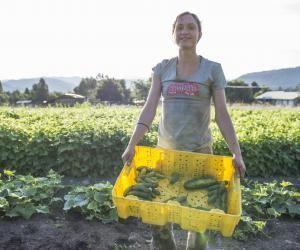 De nombreux postes sont à pourvoir dans l'agriculture durant la saisons estivale.