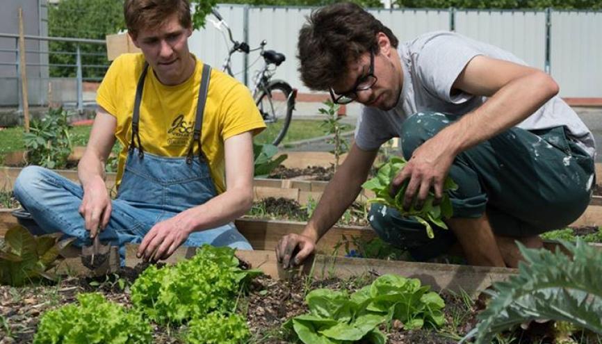À Bordeaux, Vincent (à droite) a participé à la création d'un potager universitaire sur son campus. //©Karavan Bordelaise