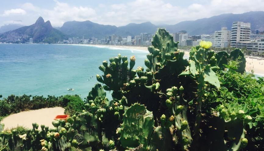 Hémisphère sud oblige, le calendrier est inversé au Brésil. Le premier semestre s'étale de mars à juillet. //©Jessica Gourdon