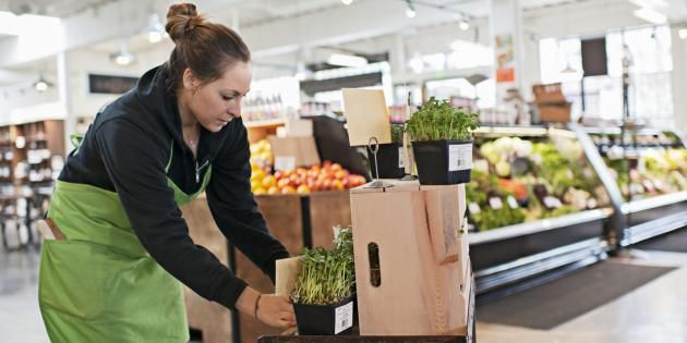 Un job dans un supermarché : bon plan pour l'été. //©plainpicture/Fancy Images/Helen King
