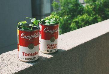 Des boîtes de conserve comme cache-pot, original non ? //©vividviolet322