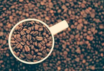 Besoin de vous réveiller ? Y'a pas que le café //©ciccioetneo