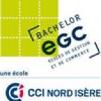 Ecole de Commerce de Villefontaine