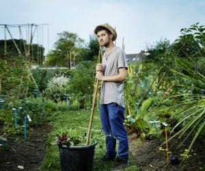 Agriculture, écologie, environnement : les bacs pour passer auvert