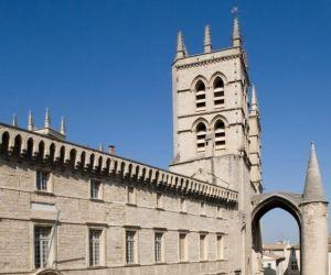 La PACES de l'université de Montpellier à la loupe