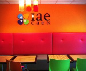 L'IAE de Caen : l'autre formation d'excellence en management de Caen