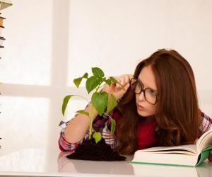 Écoles d'ingénieurs : la voie A du concours agro-véto, mode d'emploi