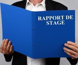 Stage de 3e : comment bien rédiger son rapport ?