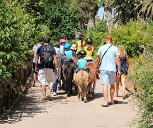 BAFA à l'international : comment faire pour encadrer des colos à l'étranger ?