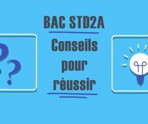 Bac STD2A 2020 : conseils pour réussir l'épreuve d'analyse méthodique en design et arts appliqués