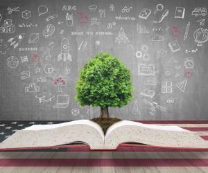 Classement THE Impact développement durable : quelles sont les meilleures universités ?