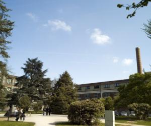 Médecine et dentaire: laBelgique instaure unexamen àl'entrée des universités