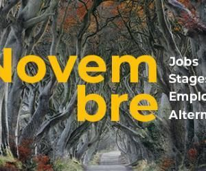 Les offres de job, de stage, d'alternance et d'emploi àne pas manquer en Novembre